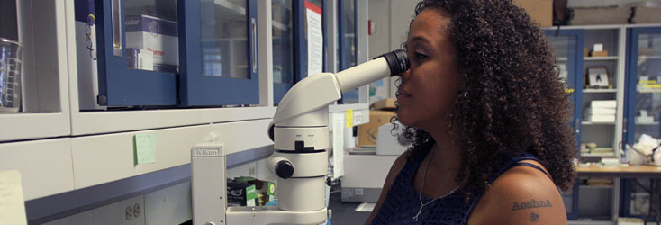 Photo: Jessica Ware ('08), setting the insect world abuzz.